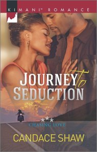 Journey to Seduction (Chasing Love) by Candace Shaw