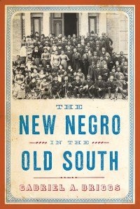 The New Negro in the Old South by Gabriel A. Briggs